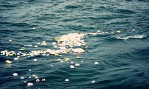 Sea Burial Arrangement-1
